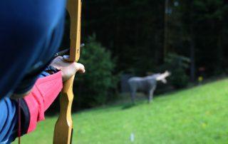 Bogensport im Mühlviertel - Hotel Almesberger****S