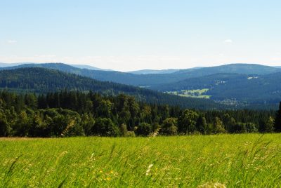 Wanderurlaub im Mühlviertel & im Böhmerwald - Hotel Almesberger****S