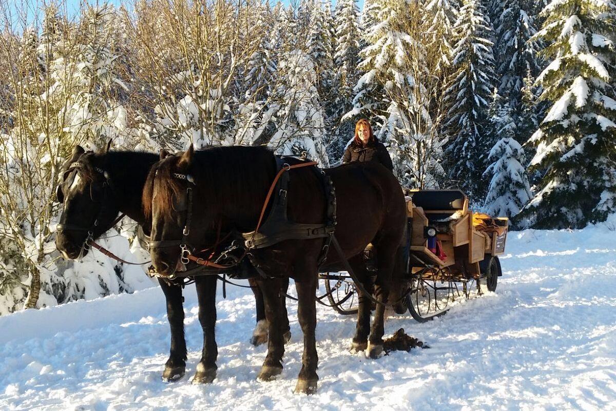 Highlights im Winterurlaub im Mühlviertel - Hotel Almesberger****S