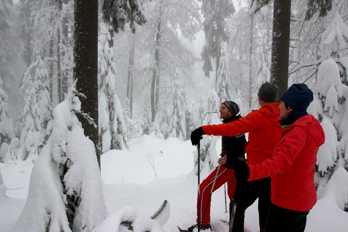 Schneeschuhwandern im Böhmerwald - Hotel Almesberger****S