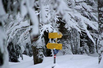 Ein Erlebnis: Winterwandern im Mühlviertel - Hotel Almesberger****S
