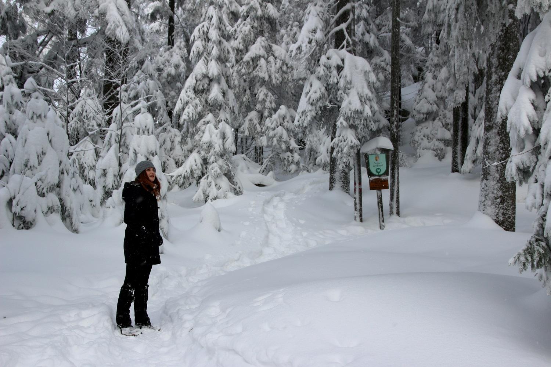 Es gibt eines zu Entdecken beim Winterwandern im Mühlviertel - Hotel Almesberger****S
